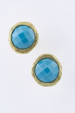 Horse Show Post Earrings - Turquoise